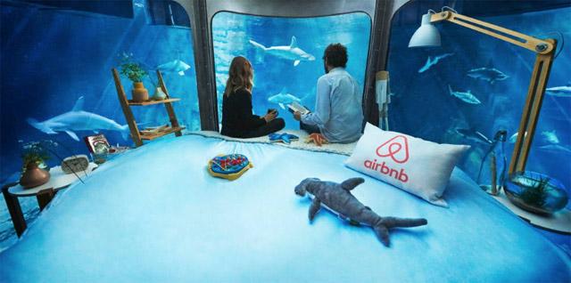 airbnb_aquarium_haaien