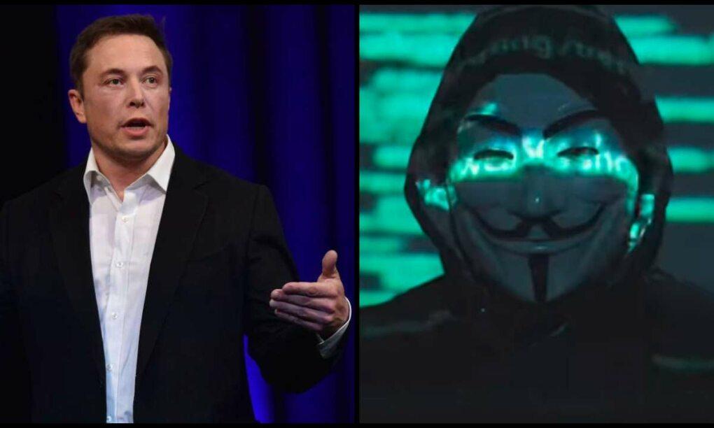 anonymous, elon, musk